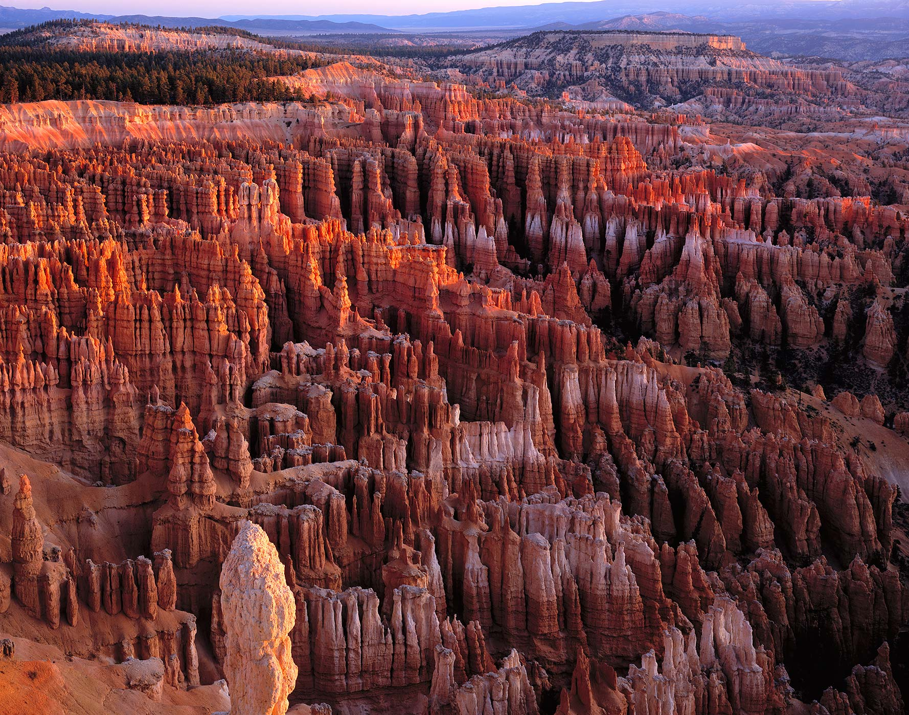 1023 Bryce Amphitheater, Sunrise, Bryce Canyon National Park, Utah