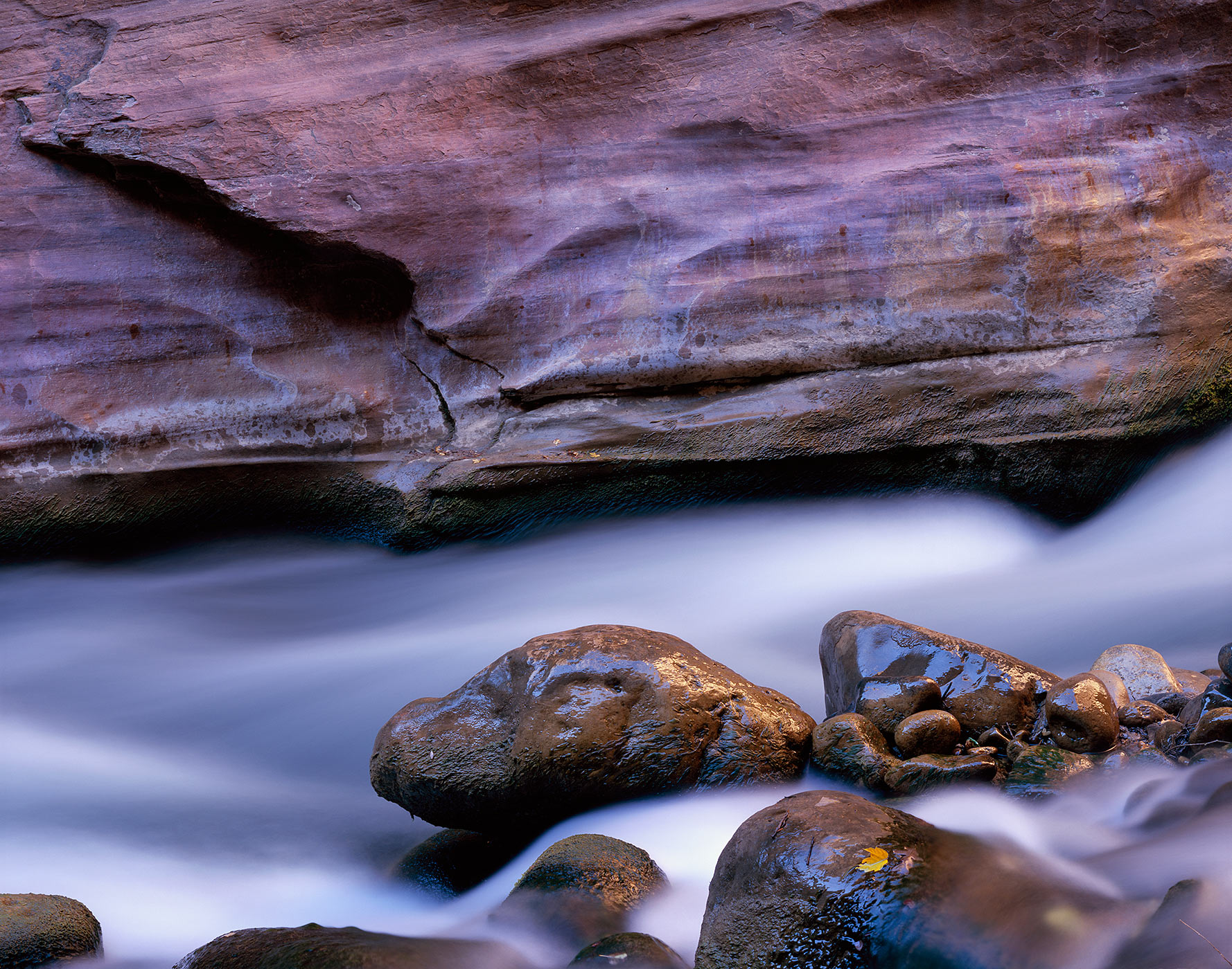 1024 Virgin River, Morning Light, Zion National Park, Utah