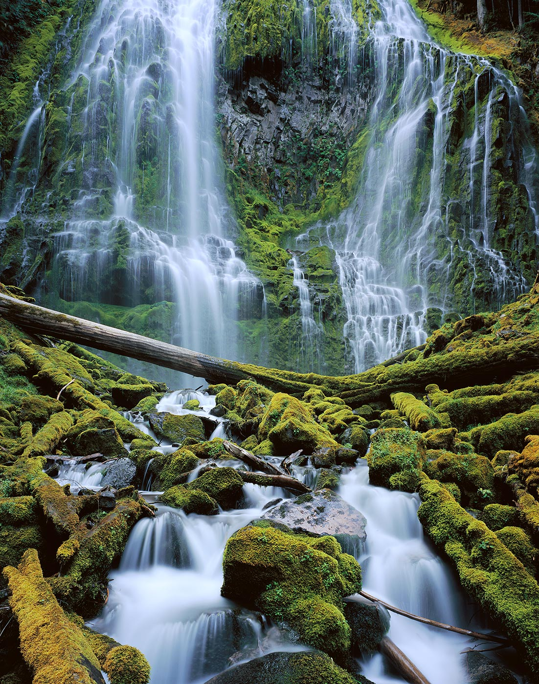 1204 Proxy Falls, Willamette National Forest, Oregon