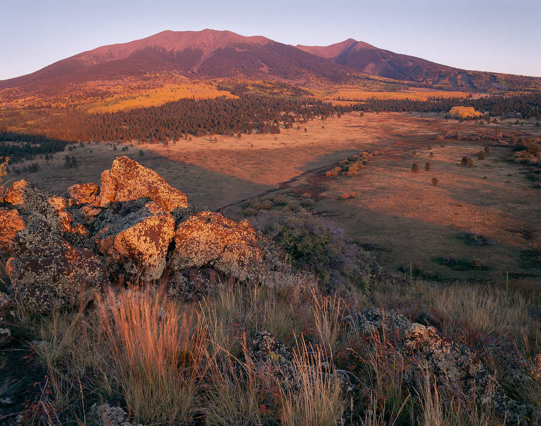 402 San Francisco Peaks in Autumn, Coconino National Forest, Arizona