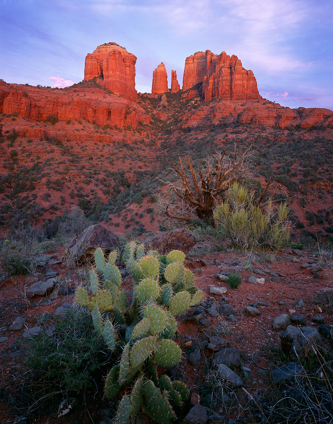 425 Cathedral Rock & Prickly Pear, Coconino National Forest, Arizona